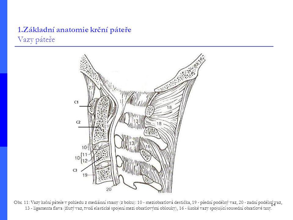 14 1.Základní anatomie krční páteře Vazy páteře Obr.