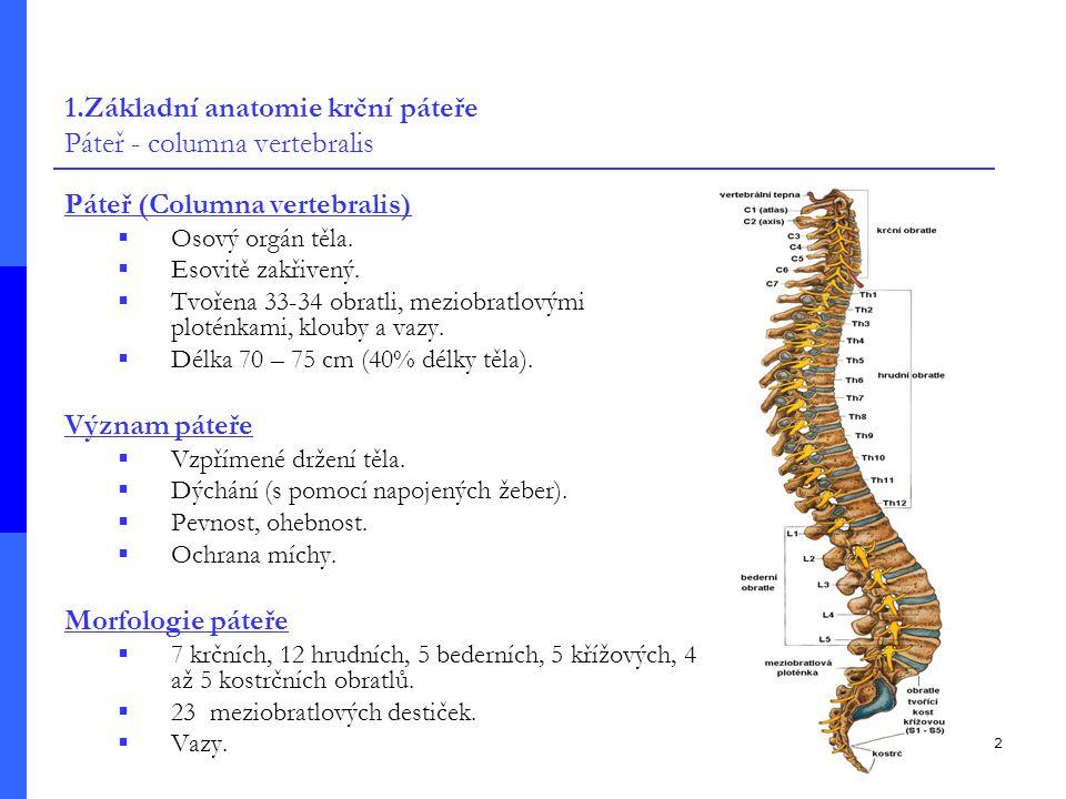 2 Páteř (Columna vertebralis)  Osový orgán těla. Esovitě zakřivený.