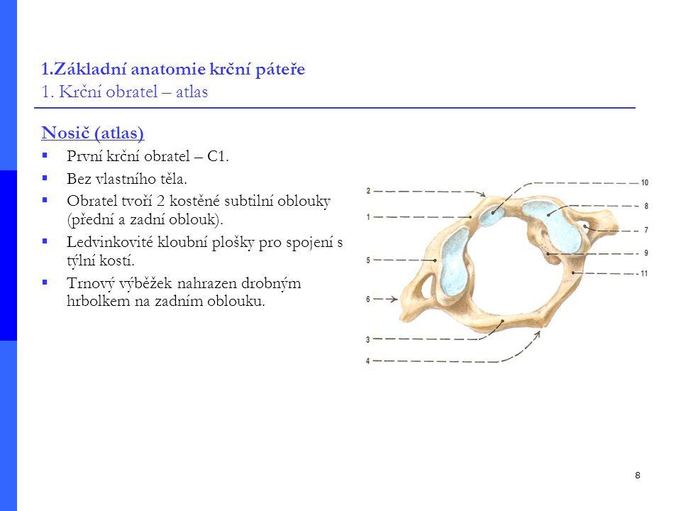 8 1.Základní anatomie krční páteře 1.