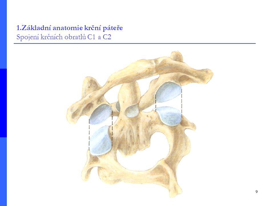 9 1.Základní anatomie krční páteře Spojení krčních obratlů C1 a C2