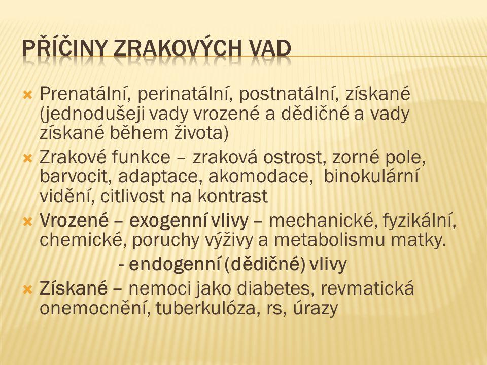  Prenatální, perinatální, postnatální, získané (jednodušeji vady vrozené a dědičné a vady získané během života)  Zrakové funkce – zraková ostrost, z