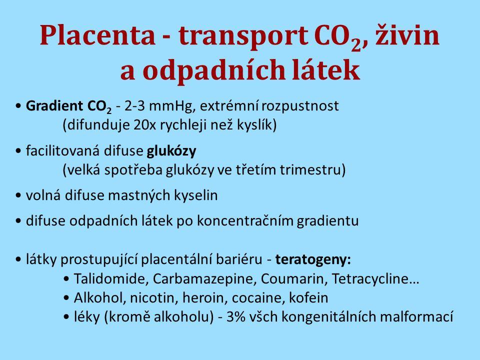 Placenta - transport CO 2, živin a odpadních látek Gradient CO 2 - 2-3 mmHg, extrémní rozpustnost (difunduje 20x rychleji než kyslík) facilitovaná difuse glukózy (velká spotřeba glukózy ve třetím trimestru) volná difuse mastných kyselin difuse odpadních látek po koncentračním gradientu látky prostupující placentální bariéru - teratogeny: Talidomide, Carbamazepine, Coumarin, Tetracycline… Alkohol, nicotin, heroin, cocaine, kofein léky (kromě alkoholu) - 3% všch kongenitálních malformací