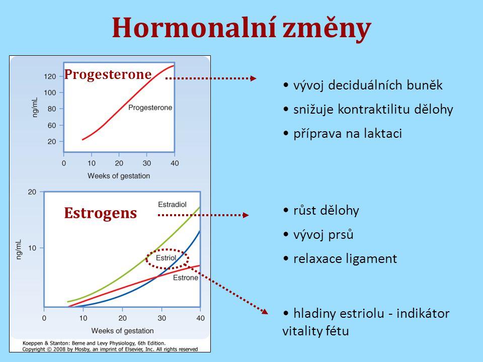Hormonalní změny Progesterone Estrogens vývoj deciduálních buněk snižuje kontraktilitu dělohy příprava na laktaci růst dělohy vývoj prsů relaxace ligament hladiny estriolu - indikátor vitality fétu