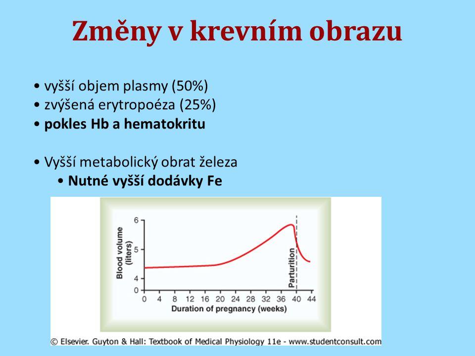 Změny v krevním obrazu vyšší objem plasmy (50%) zvýšená erytropoéza (25%) pokles Hb a hematokritu Vyšší metabolický obrat železa Nutné vyšší dodávky Fe