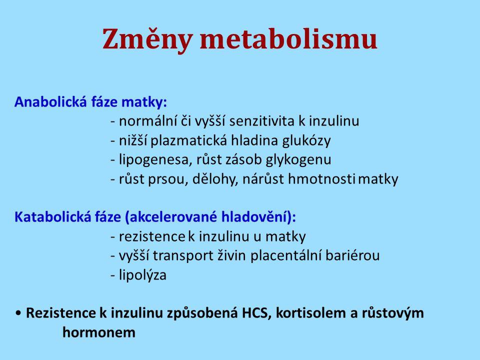 Změny metabolismu Anabolická fáze matky: - normální či vyšší senzitivita k inzulinu - nižší plazmatická hladina glukózy - lipogenesa, růst zásob glykogenu - růst prsou, dělohy, nárůst hmotnosti matky Katabolická fáze (akcelerované hladovění): - rezistence k inzulinu u matky - vyšší transport živin placentální bariérou - lipolýza Rezistence k inzulinu způsobená HCS, kortisolem a růstovým hormonem