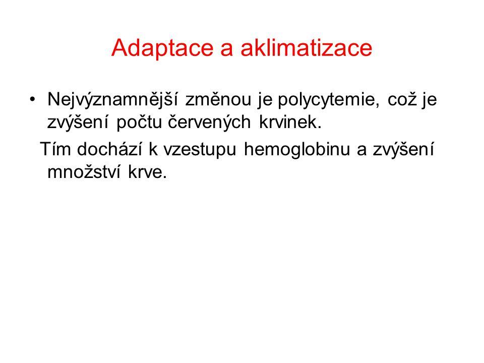 Adaptace a aklimatizace Nejvýznamnější změnou je polycytemie, což je zvýšení počtu červených krvinek.