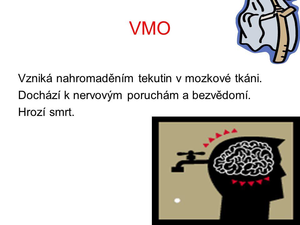 VMO Vzniká nahromaděním tekutin v mozkové tkáni.Dochází k nervovým poruchám a bezvědomí.