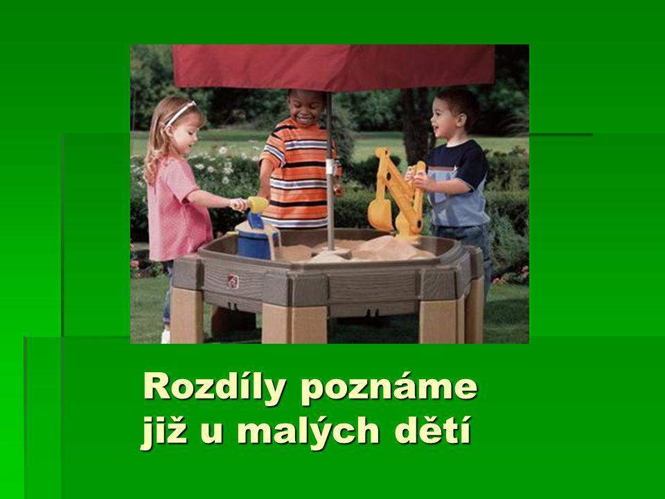 Použitá literatura:  Kulišťák, P.(2003).