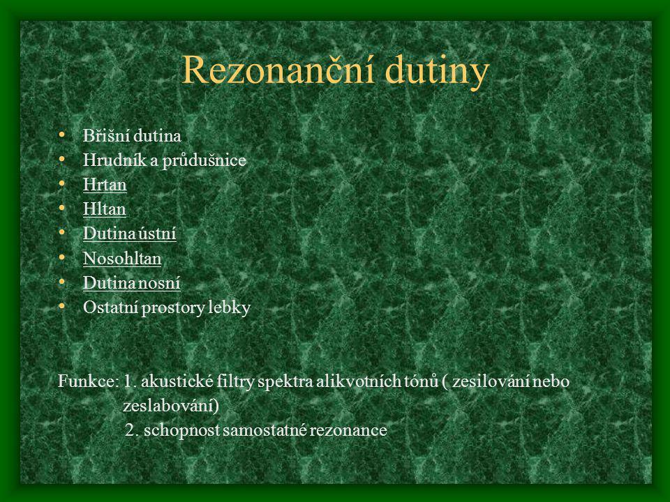 Rezonanční dutiny Břišní dutina Hrudník a průdušnice Hrtan Hltan Dutina ústní Nosohltan Dutina nosní Ostatní prostory lebky Funkce: 1. akustické filtr