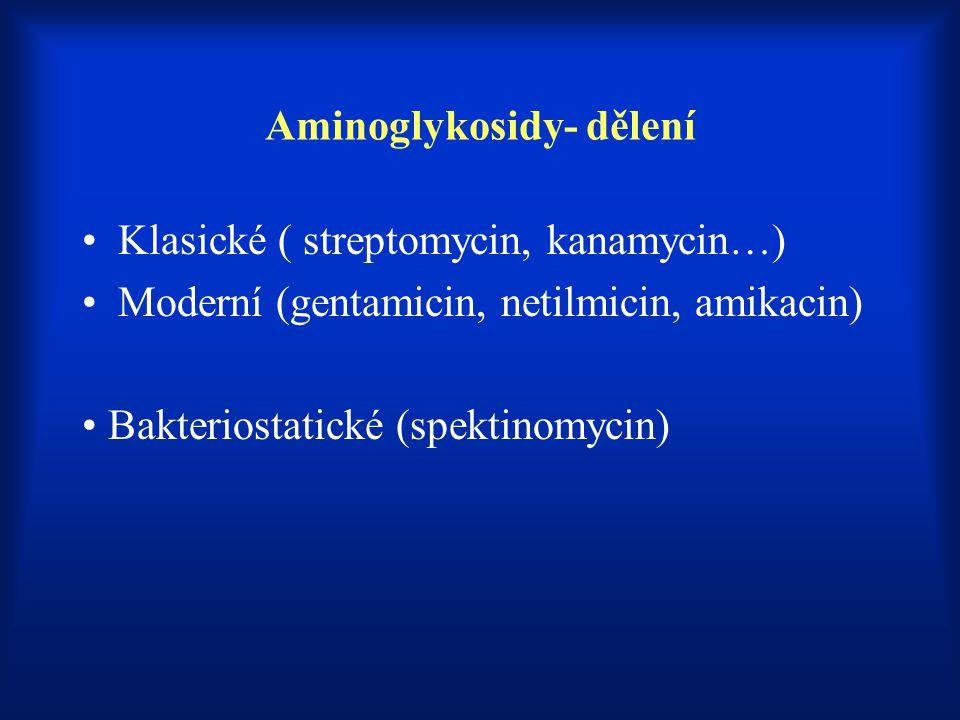 Aminoglykosidy- dělení Klasické ( streptomycin, kanamycin…) Moderní (gentamicin, netilmicin, amikacin) Bakteriostatické (spektinomycin)