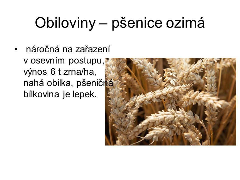 Obiloviny – ječmen jarní dlouze osinatý, náročný, řepařská výrobní oblast, součást sladu.