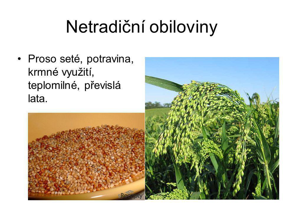 Pícniny – meliorační, nenáročné Úročník bolhoj, komonice bílá. Vhodné k rekultivacím.