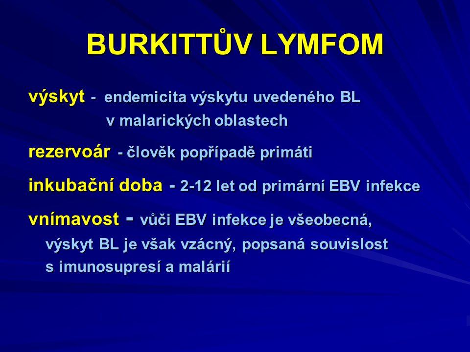 BURKITTŮV LYMFOM výskyt - endemicita výskytu uvedeného BL v malarických oblastech v malarických oblastech rezervoár - člověk popřípadě primáti inkubační doba - 2-12 let od primární EBV infekce vnímavost - vůči EBV infekce je všeobecná, výskyt BL je však vzácný, popsaná souvislost výskyt BL je však vzácný, popsaná souvislost s imunosupresí a malárií s imunosupresí a malárií