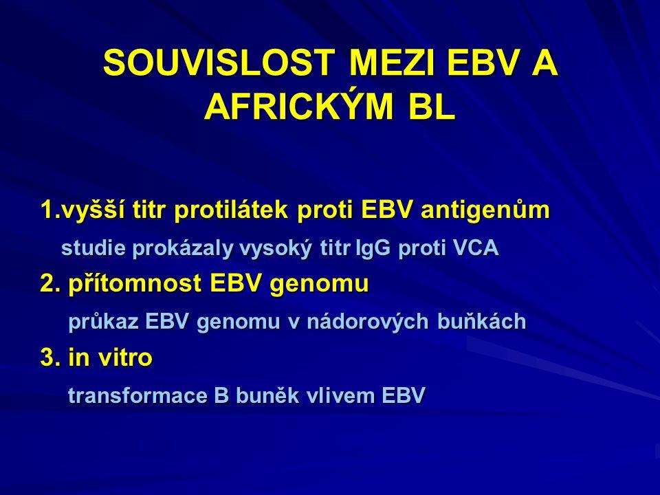 SOUVISLOST MEZI EBV A AFRICKÝM BL 1.vyšší titr protilátek proti EBV antigenům studie prokázaly vysoký titr IgG proti VCA studie prokázaly vysoký titr IgG proti VCA 2.