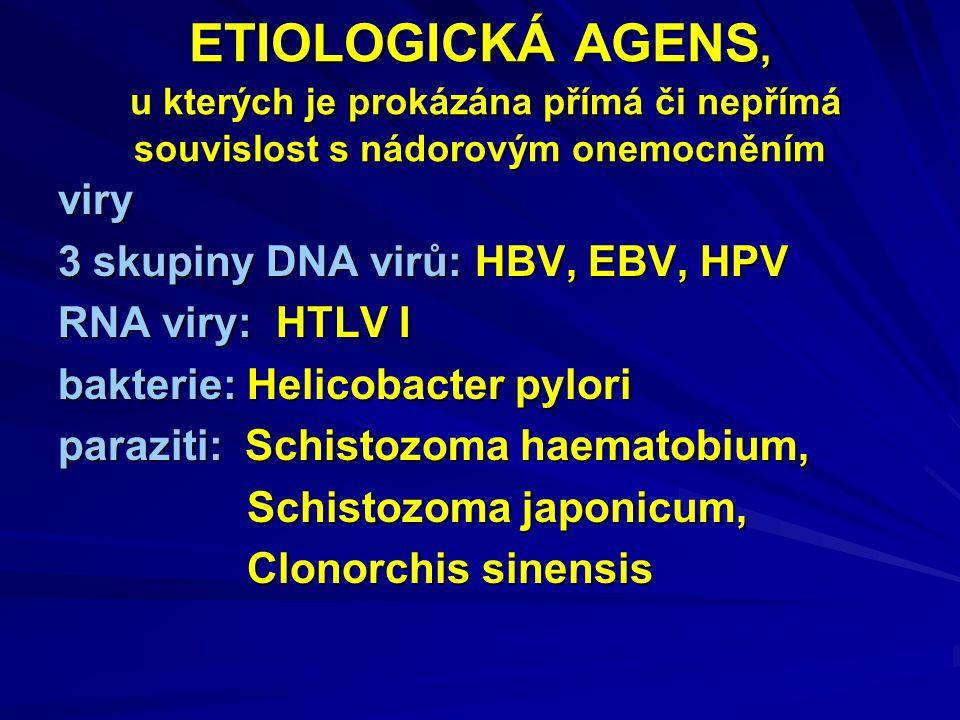 ETIOLOGICKÁ AGENS, u kterých je prokázána přímá či nepřímá souvislost s nádorovým onemocněním viry 3 skupiny DNA virů: HBV, EBV, HPV RNA viry: HTLV I bakterie: Helicobacter pylori paraziti: Schistozoma haematobium, Schistozoma japonicum, Schistozoma japonicum, Clonorchis sinensis Clonorchis sinensis