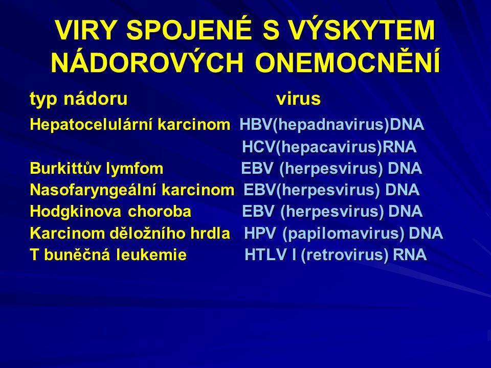 VIRY SPOJENÉ S VÝSKYTEM NÁDOROVÝCH ONEMOCNĚNÍ typ nádoru virus Hepatocelulární karcinom HBV(hepadnavirus)DNA HCV(hepacavirus)RNA HCV(hepacavirus)RNA Burkittův lymfom EBV (herpesvirus) DNA Nasofaryngeální karcinom EBV(herpesvirus) DNA Hodgkinova choroba EBV (herpesvirus) DNA Karcinom děložního hrdla HPV (papilomavirus) DNA T buněčná leukemie HTLV I (retrovirus) RNA