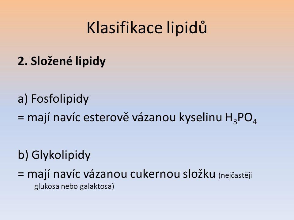 Klasifikace lipidů 2. Složené lipidy a) Fosfolipidy = mají navíc esterově vázanou kyselinu H 3 PO 4 b) Glykolipidy = mají navíc vázanou cukernou složk
