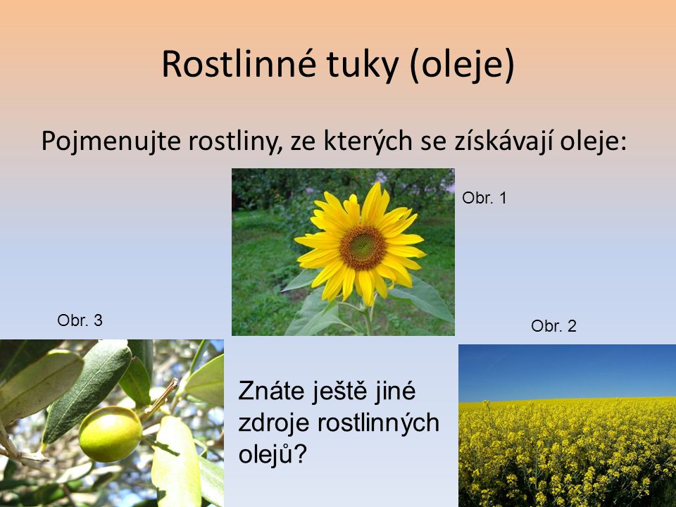 Rostlinné tuky (oleje) Pojmenujte rostliny, ze kterých se získávají oleje: Znáte ještě jiné zdroje rostlinných olejů? Obr. 1 Obr. 3 Obr. 2