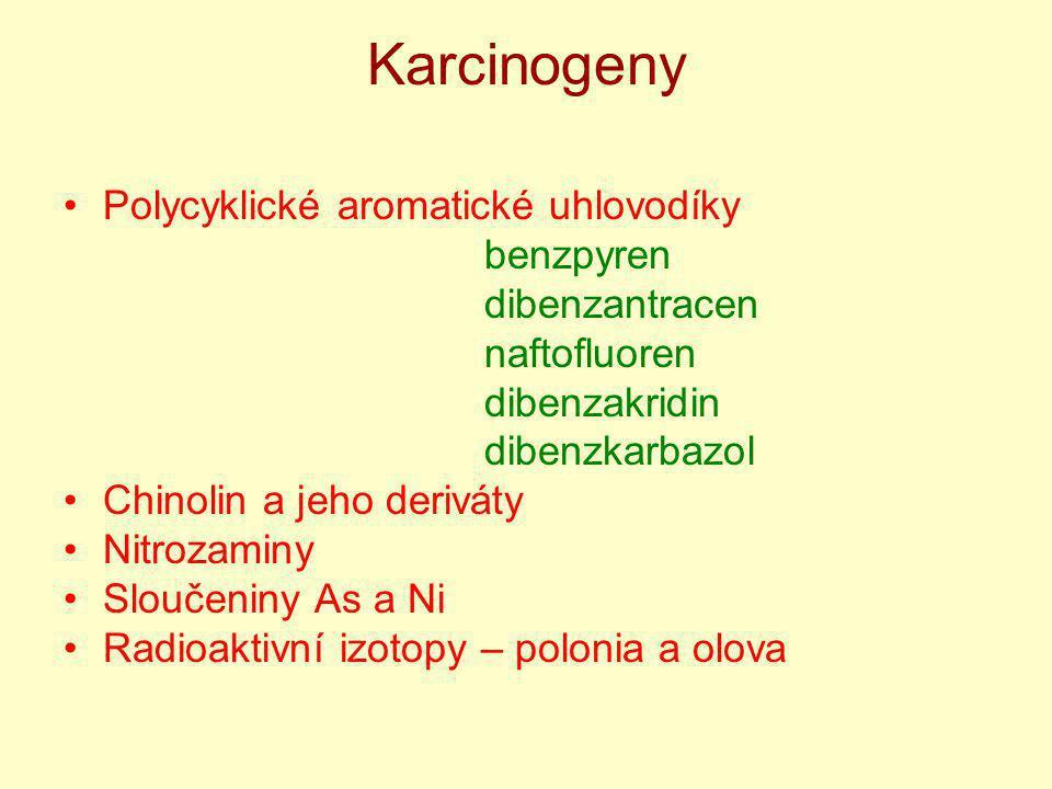 Karcinogeny Polycyklické aromatické uhlovodíky benzpyren dibenzantracen naftofluoren dibenzakridin dibenzkarbazol Chinolin a jeho deriváty Nitrozaminy