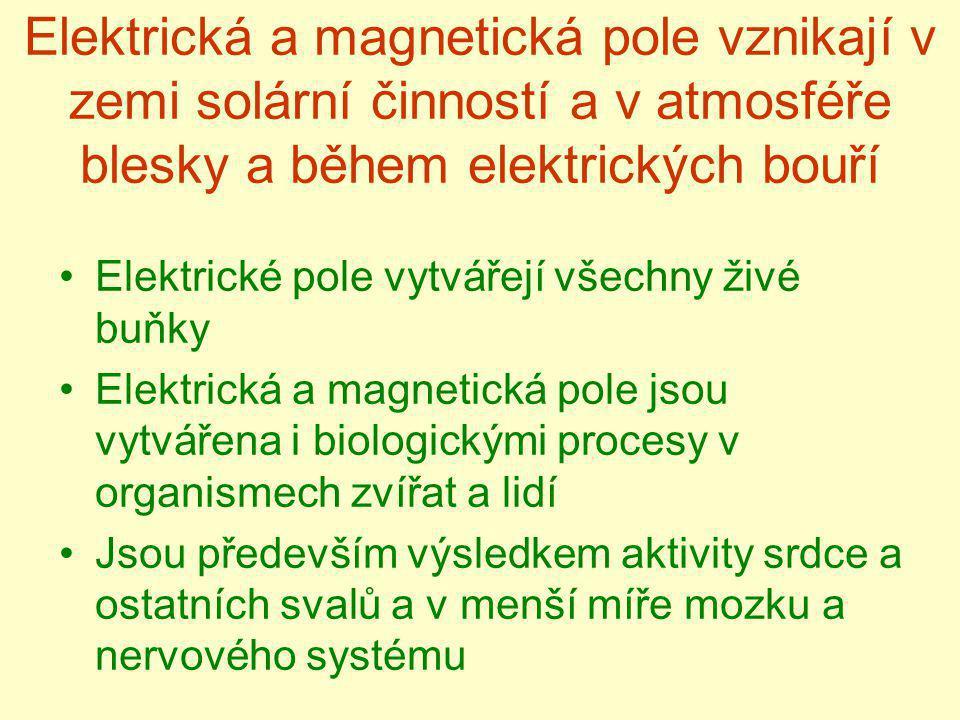 Elektrická a magnetická pole vznikají v zemi solární činností a v atmosféře blesky a během elektrických bouří Elektrické pole vytvářejí všechny živé b