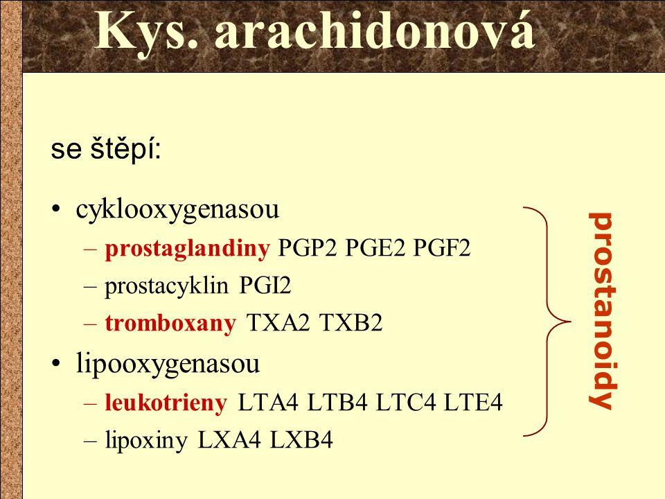 cyklooxygenasou –prostaglandiny PGP2 PGE2 PGF2 –prostacyklin PGI2 –tromboxany TXA2 TXB2 lipooxygenasou –leukotrieny LTA4 LTB4 LTC4 LTE4 –lipoxiny LXA4