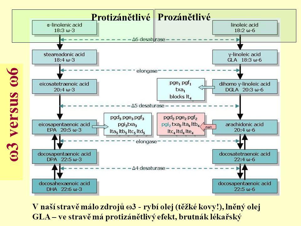 ω3 versus ω6 Protizánětlivé Prozánětlivé V naší stravě málo zdrojů ω3 - rybí olej (těžké kovy!), lněný olej GLA – ve stravě má protizánětlivý efekt, b