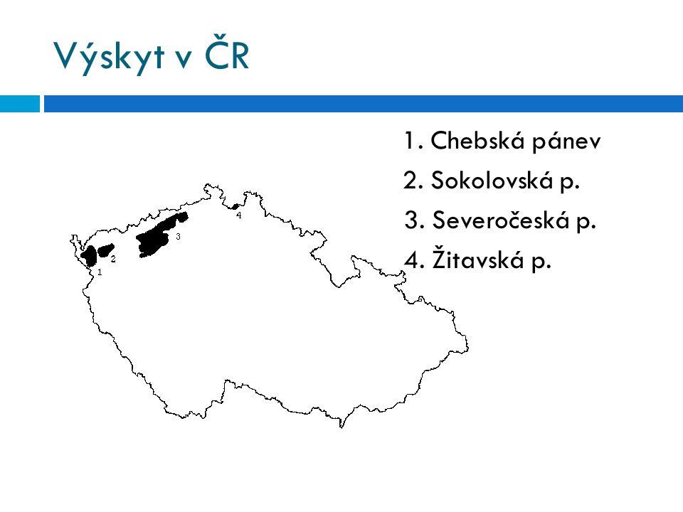 Výskyt v ČR 1. Chebská pánev 2. Sokolovská p. 3. Severočeská p. 4. Žitavská p.