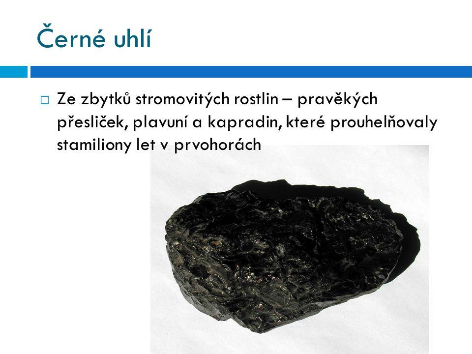 Černé uhlí  Ze zbytků stromovitých rostlin – pravěkých přesliček, plavuní a kapradin, které prouhelňovaly stamiliony let v prvohorách