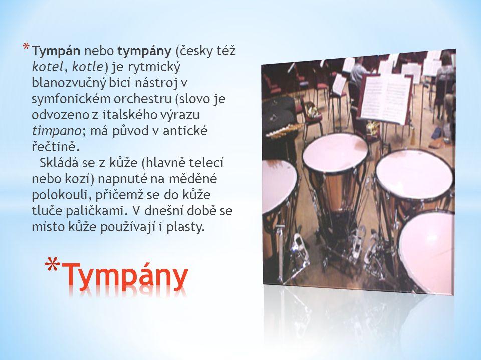 * Tympán nebo tympány (česky též kotel, kotle) je rytmický blanozvučný bicí nástroj v symfonickém orchestru (slovo je odvozeno z italského výrazu timp