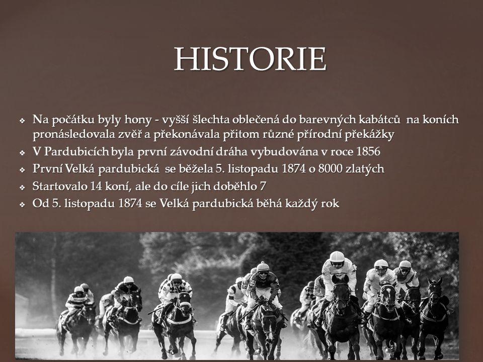  Na počátku byly hony - vyšší šlechta oblečená do barevných kabátců na koních pronásledovala zvěř a překonávala přitom různé přírodní překážky   V Pardubicích byla první závodní dráha vybudována v roce 1856  První Velká pardubická se běžela 5.