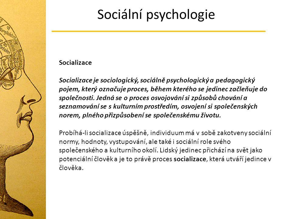 Sociální psychologie Socializace Socializace je sociologický, sociálně psychologický a pedagogický pojem, který označuje proces, během kterého se jedi