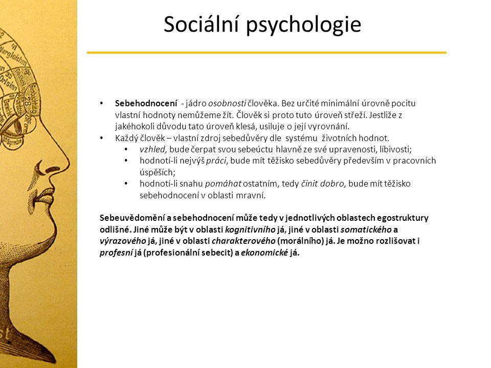 Sociální psychologie Sebehodnocení - jádro osobnosti člověka. Bez určité minimální úrovně pocitu vlastní hodnoty nemůžeme žít. Člověk si proto tuto úr