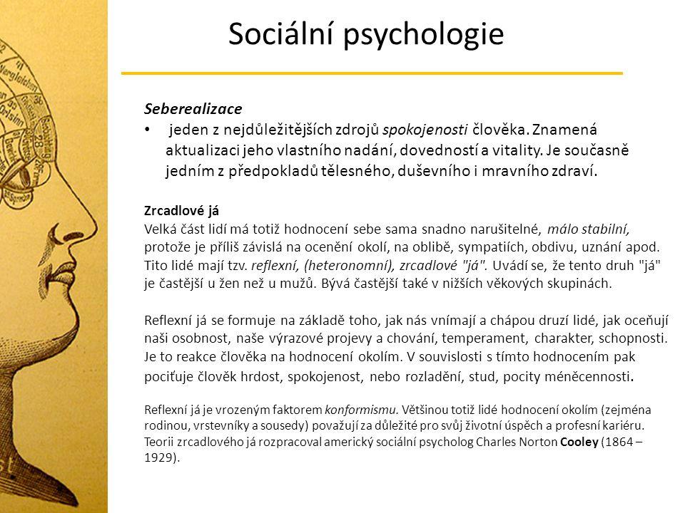 Sociální psychologie Seberealizace jeden z nejdůležitějších zdrojů spokojenosti člověka. Znamená aktualizaci jeho vlastního nadání, dovedností a vital