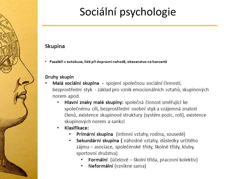 Sociální psychologie Skupina Pasažéři v autobuse, lidé při dopravní nehodě, obecenstvo na koncertě Druhy skupin Malá sociální skupina - spojení společ