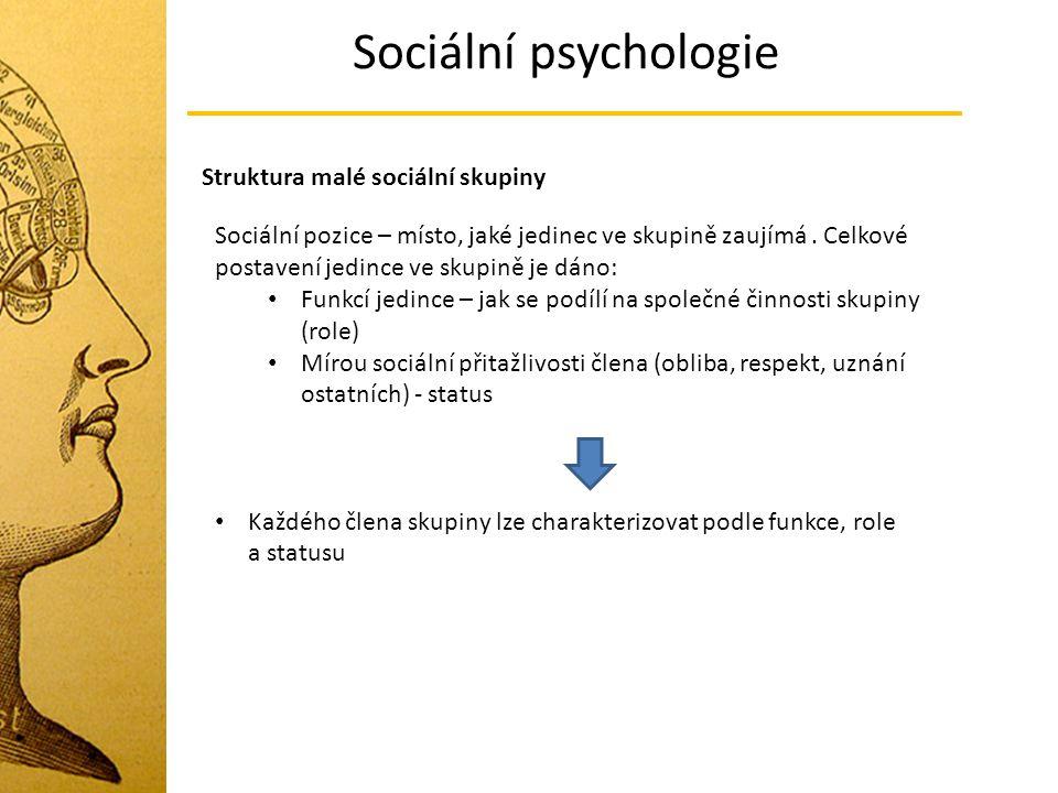 Sociální psychologie Struktura malé sociální skupiny Sociální pozice – místo, jaké jedinec ve skupině zaujímá. Celkové postavení jedince ve skupině je