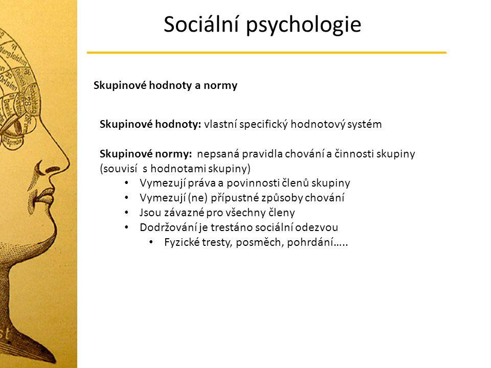 Sociální psychologie Skupinové hodnoty a normy Skupinové hodnoty: vlastní specifický hodnotový systém Skupinové normy: nepsaná pravidla chování a činn