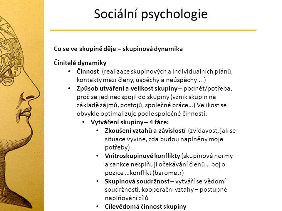 Sociální psychologie Co se ve skupině děje – skupinová dynamika Činitelé dynamiky Činnost (realizace skupinových a individuálních plánů, kontakty mezi