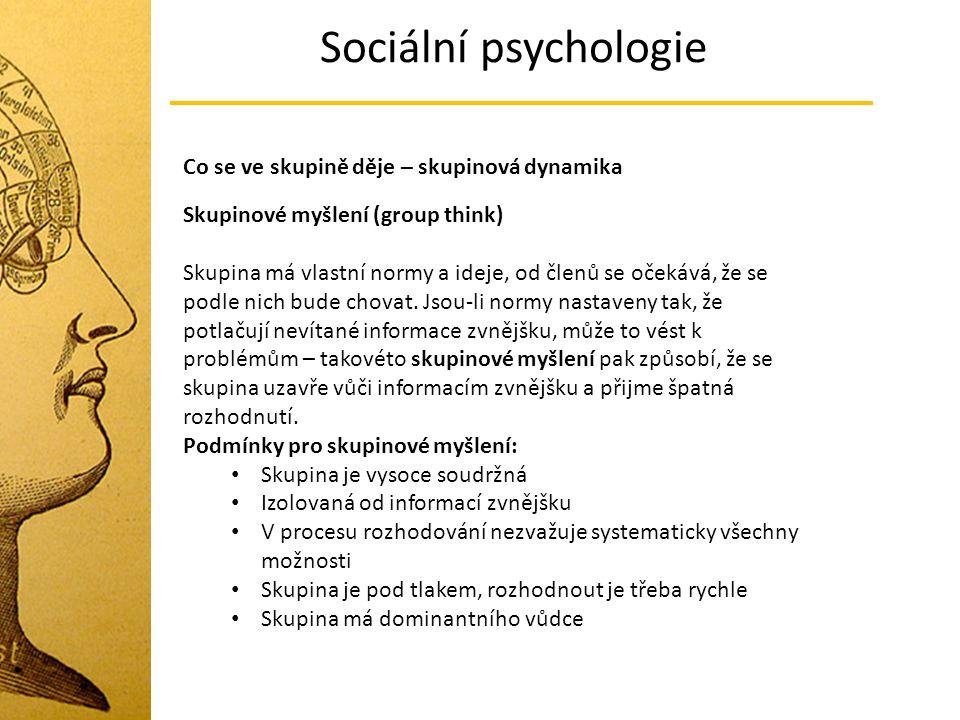 Sociální psychologie Co se ve skupině děje – skupinová dynamika Skupinové myšlení (group think) Skupina má vlastní normy a ideje, od členů se očekává,