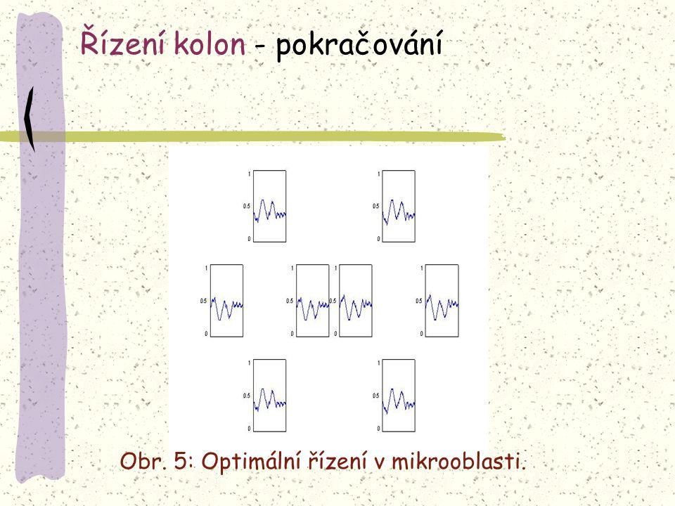 Obr. 5: Optimální řízení v mikrooblasti. Řízení kolon - pokračování