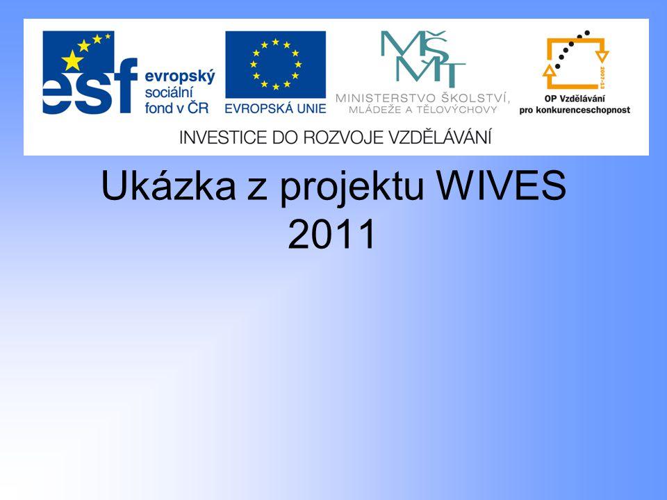Ukázka z projektu WIVES 2011