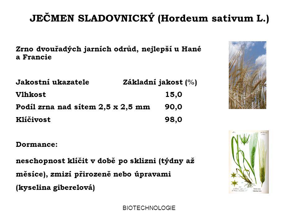 BIOTECHNOLOGIE JEČMEN SLADOVNICKÝ (Hordeum sativum L.) Zrno dvouřadých jarních odrůd, nejlepší u Hané a Francie Jakostní ukazatele Základní jakost (%) Vlhkost15,0 Podíl zrna nad sítem 2,5 x 2,5 mm90,0 Klíčivost98,0 Dormance: neschopnost klíčit v době po sklizni (týdny až měsíce), zmizí přirozeně nebo úpravami (kyselina giberelová)