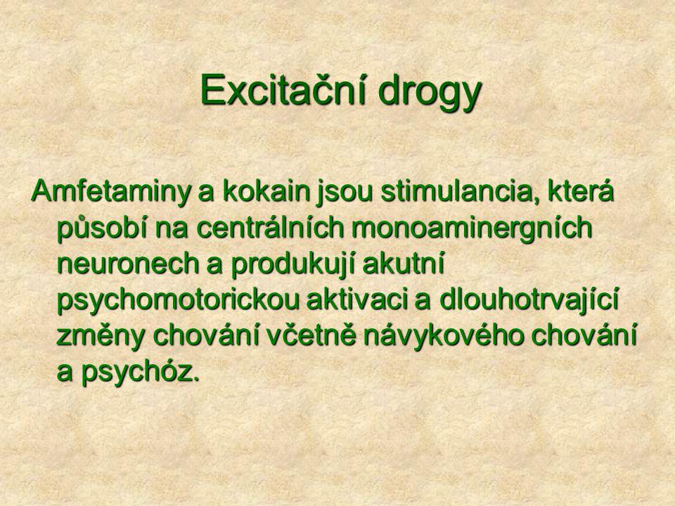 Excitační drogy Amfetaminy a kokain jsou stimulancia, která působí na centrálních monoaminergních neuronech a produkují akutní psychomotorickou aktivaci a dlouhotrvající změny chování včetně návykového chování a psychóz.
