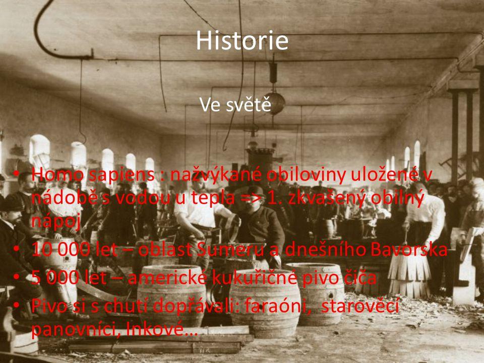 Historie Ve světě Homo sapiens : nažvýkané obiloviny uložené v nádobě s vodou u tepla => 1.