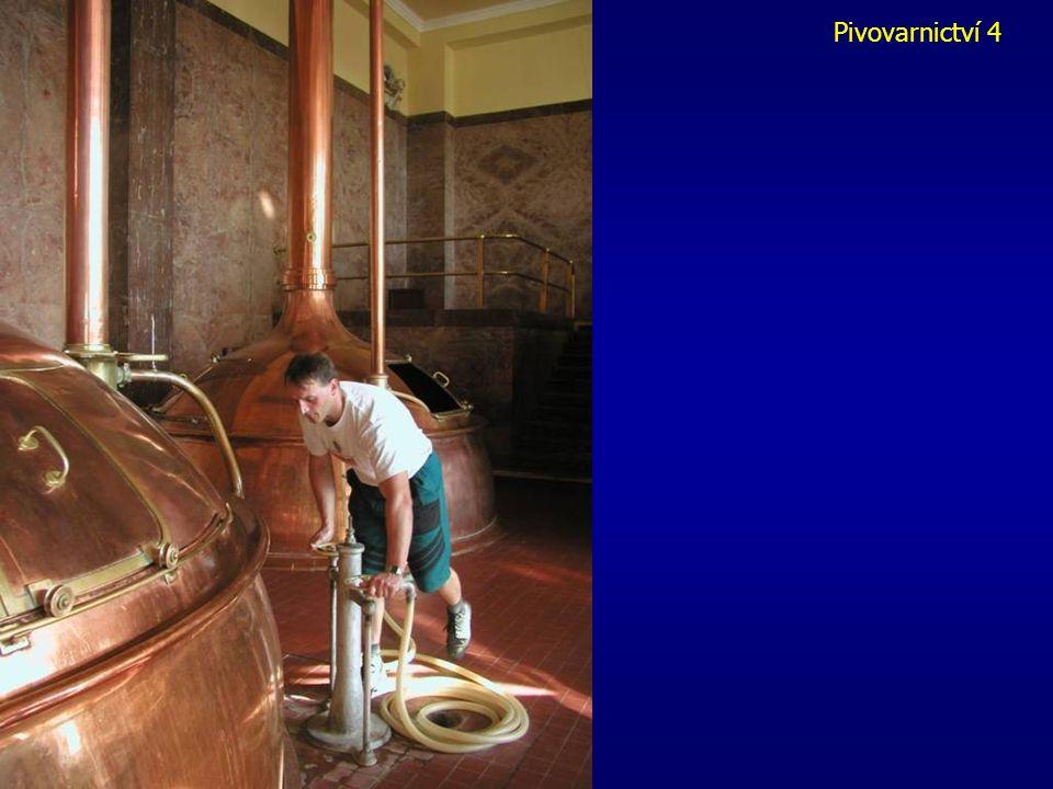 Pivovarnictví 2