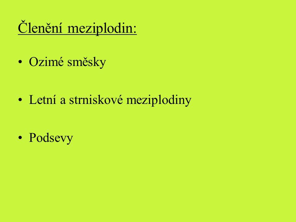 Členění meziplodin: Ozimé směsky Letní a strniskové meziplodiny Podsevy