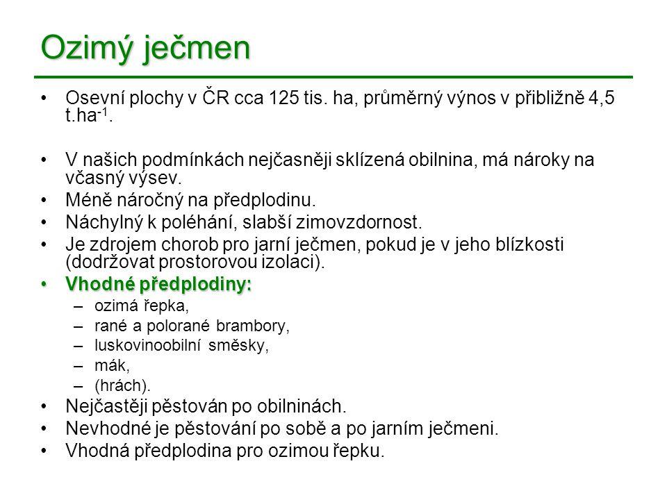 Ozimý ječmen Osevní plochy v ČR cca 125 tis. ha, průměrný výnos v přibližně 4,5 t.ha -1. V našich podmínkách nejčasněji sklízená obilnina, má nároky n