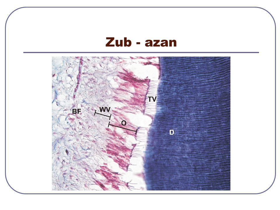 Zub - azan