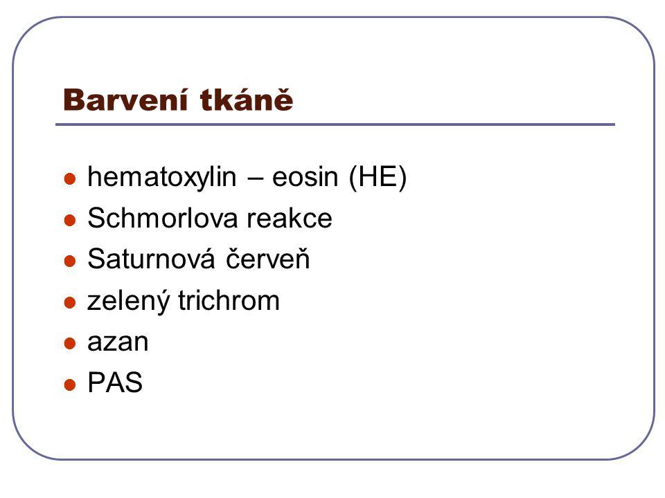 Barvení tkáně hematoxylin – eosin (HE) Schmorlova reakce Saturnová červeň zelený trichrom azan PAS