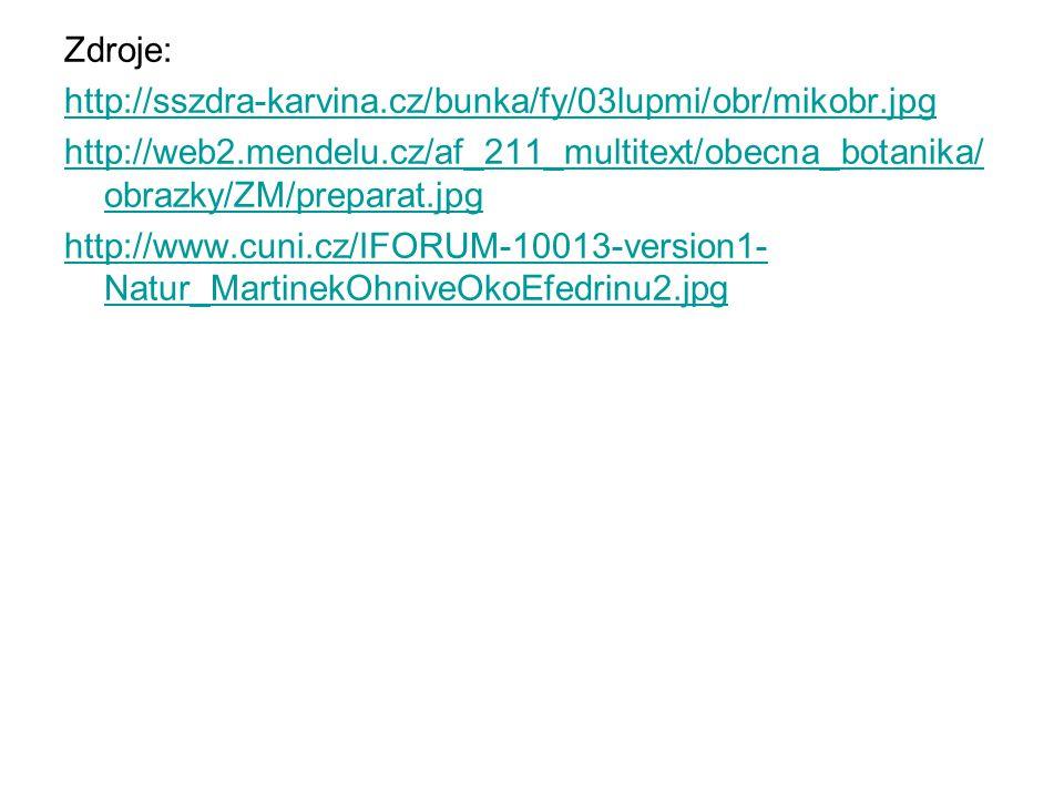 Zdroje: http://sszdra-karvina.cz/bunka/fy/03lupmi/obr/mikobr.jpg http://web2.mendelu.cz/af_211_multitext/obecna_botanika/ obrazky/ZM/preparat.jpg http://www.cuni.cz/IFORUM-10013-version1- Natur_MartinekOhniveOkoEfedrinu2.jpg