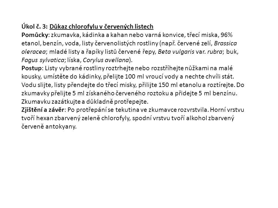 Úkol č.4.